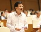 Phó Thủ tướng: Tình trạng sốt đất tại 3 đặc khu tiềm ẩn ủi ro