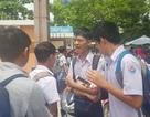 Hàng trăm phụ huynh đội nắng chờ con dự thi lớp 10 trường chuyên