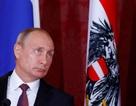Tổng thống Putin: Tôi lẽ ra đã trở thành một luật sư