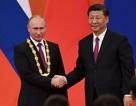 """""""Giải mã"""" món quà đặc biệt ông Tập Cận Bình tặng ông Putin"""