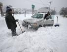 """Bão tuyết """"càn quét"""" nước Mỹ: 6 người chết, 4.000 chuyến bay bị hủy"""