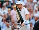 Andy Murray quyết định không dự Wimbledon ngay trước ngày khai mạc