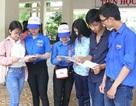 Cà Mau: Môn tiếng Anh có trên 88% điểm dưới trung bình