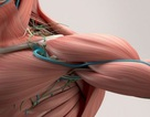 Kỹ thuật máy học có thể dự đoán tuổi sinh học của cơ