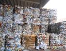 Hiệp hội Giấy và Bột giấy: Tổng cục Hải quan ban hành 2 văn bản làm khó doanh nghiệp