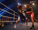 5 cuộc đối đầu tại Vina Boxing Cup 2018
