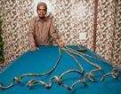 Bộ móng tay dài nhất thế giới cuối cùng đã bị cắt - sau 66 năm