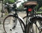 Xe đạp Favorit đầy hoài niệm, đại gia các thêm tiền hỏi mua cũng không bán