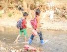 Thành công từ 53 gói thầu đấu thầu qua mạng: Tín hiệu tích cực cho tỉnh Sơn La