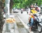 """Ấm áp tình người ở Hà Nội: Bánh mì """"miễn phí - mỗi người một ổ"""""""