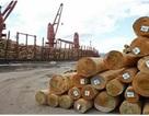 Hiệp hội Gỗ phản ứng gay gắt về cáo buộc nhập lậu gỗ từ Campuchia của EIA