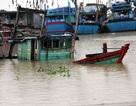 """Ngư dân nhấn chìm tàu thuyền để """"trốn"""" bão"""