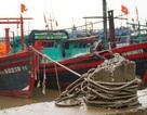 Thanh Hóa: Tàu thuyền cấp tập vào bờ tránh trú bão Sơn Tinh