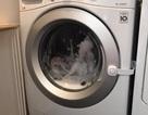 Cơn ác mộng phụ huynh: Một đứa bé 3 tuổi bị mắc kẹt trong máy giặt