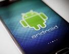 Android có thể không còn miễn phí, tương lai thị trường smartphone sẽ thay đổi mãi mãi