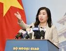 Bộ Ngoại giao nói về thông tin Việt Nam chi gần 100 triệu USD mua vũ khí Mỹ