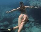 """Hài hước khoảnh khắc bạch tuộc """"lười biếng"""" đi nhờ trên chân của người đẹp lặn biển"""