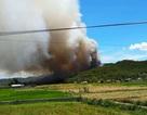 500 người dập lửa giữa cái nóng gần 40 độ C để cứu rừng