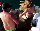 Video người phụ nữ cho cá mập ăn, bị cá mập kéo luôn xuống biển