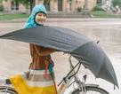 Chiếc ô mơ ước của người đi xe đạp