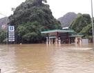 Quảng Ninh: Ngập sâu tới hơn 1m tại Đèo Bụt
