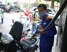 Giữ ổn định giá xăng, giảm nhẹ giá dầu kể từ chiều nay