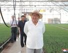 """Ông Kim Jong-un đi thị sát giữa lúc kêu gọi người dân """"thắt lưng buộc bụng"""""""