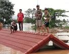 Vỡ đập thủy điện ở Lào có ảnh hưởng đến Đồng bằng Sông Cửu Long?