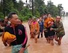 Cộng đồng quốc tế dốc sức hỗ trợ Lào sau sự cố vỡ đập thủy điện