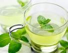 Lợi ích sức khỏe của trà bạc hà