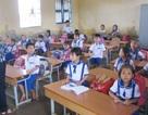 Cà Mau: Hơn 1.400 giáo viên sẽ bị chấm dứt hợp đồng