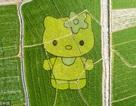 """Bức họa đồng quê ở Trung Quốc bị chê """"nhái lại"""" của Nhật Bản"""