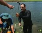 Mò hồ lặn bóng: Kiếm tiền từ thú đánh golf của đại gia