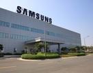 200 nhà cung ứng cấp 1 cho Samsung ở Việt Nam: Có 29 doanh nghiệp nội