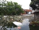 """Kinh hoàng """"biển rác"""" bủa vây người dân ngoại thành Hà Nội sau mưa lũ"""