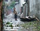"""Hà Nội: Dân vùng ngập khốn khổ vì bị rác thải, xác động vật """"vây hãm"""""""