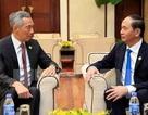 Chủ tịch nước, Thủ tướng chúc mừng 45 năm quan hệ ngoại giao Việt Nam - Singapore