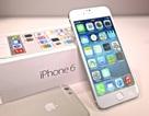 iPhone 6 bất ngờ xuống giá dưới 3 triệu đồng