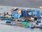 Hủy hỗ trợ 175 trường hợp thiệt hại bão Damrey, trả lại ngân sách hơn 23 tỷ đồng