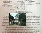 UBND tỉnh Nghệ An chỉ đạo làm rõ vụ giám đốc nông trường bị tố bán đất không văn tự!