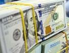 Nền tảng vĩ mô vững chắc, VND bị mất giá ít hơn các đồng tiền châu Á