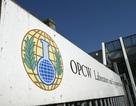 Tổ chức quốc tế không tìm thấy chất độc thần kinh ở thành phố của Syria
