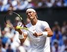 Wimbledon: Nadal thắng nhàn, Halep thua sốc