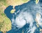 Khả năng xuất hiện 1-2 cơn bão hoặc áp thấp nhiệt đới trong tháng 8