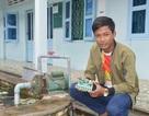 Cậu học trò người dân tộc Khmer giành giải Nhất cuộc thi Sáng tạo