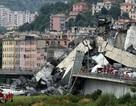 Vụ sập cầu tại Italy: Thảm kịch được dự báo từ trước