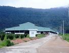 Dự án nhà máy rác hơn 200 tỷ đồng ở Phú Quốc bị đề nghị thu hồi