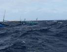 Quảng Ngãi: Chỉ trong 10 ngày có đến 4 tàu cá bị chìm trên biển