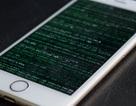 Cậu bé 16 tuổi công khai hack 90GB dữ liệu mật của Apple vì muốn xin việc