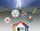 Những kỹ năng tuyệt đối phải nhớ để an toàn trong mùa mưa bão
